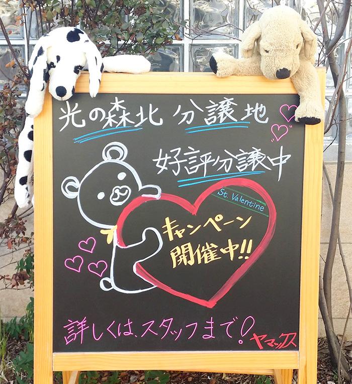 ヤマックス熊本yamax炭の家キャンペーン1-2.jpg