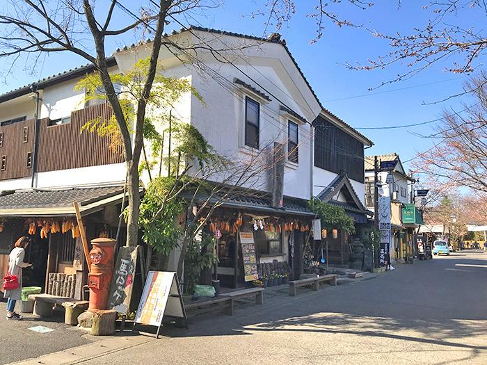ヤマックスyamax新築炭の家阿蘇神社お花見と馬ロッケ5.jpg