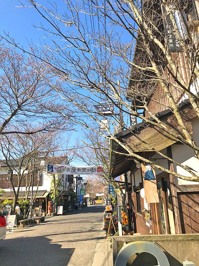 ヤマックスyamax新築炭の家阿蘇神社お花見と馬ロッケ6.jpg