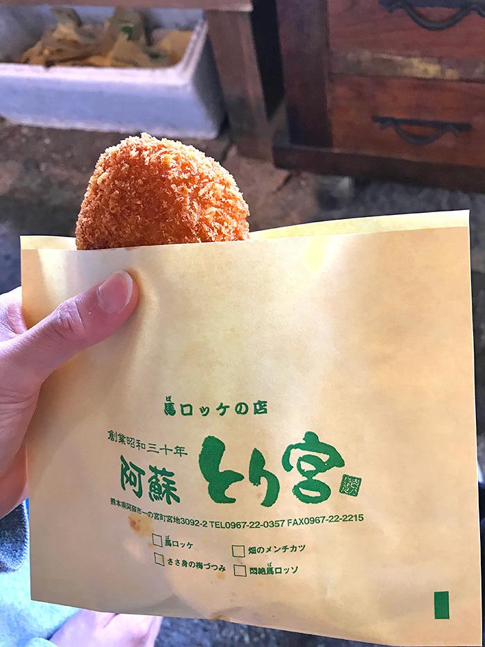 ヤマックスyamax新築炭の家阿蘇神社お花見と馬ロッケ7.jpg