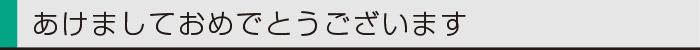 ヤマックスyamax新築熊本styledesign炭の家新年0.jpg